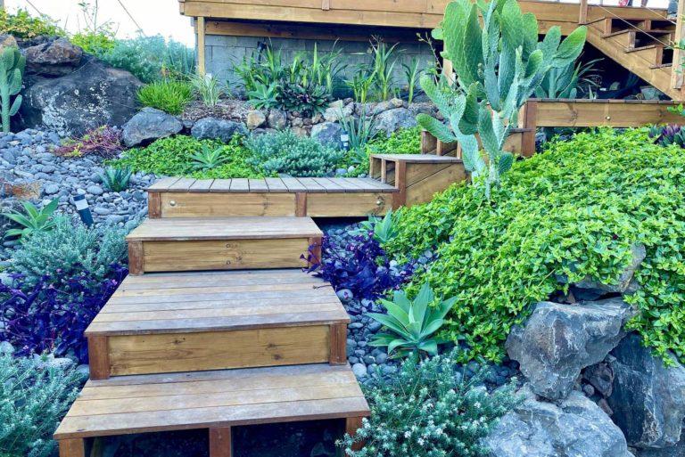 Aménagement d'un jardin tropical à Trois Bassins
