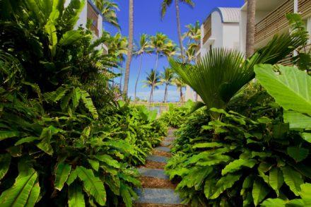 Jardin extérieur de l'hôtel Le Ness